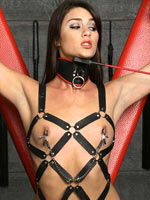 Bondage pornstar Kellie Krave