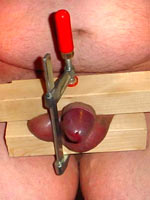 Amateur Cock and ball torture pics