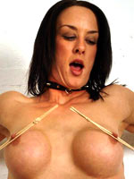 Clamps on the nipples