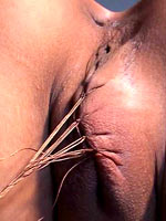 Pussy duration pain
