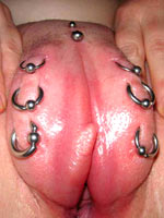 Exposed pierced pussies