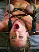 Her last BDSM session